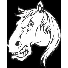 Hlava koně - na auto