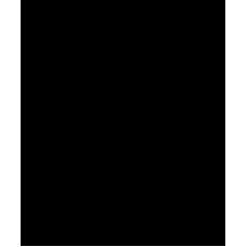 Palma 002