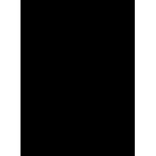 Palma 003