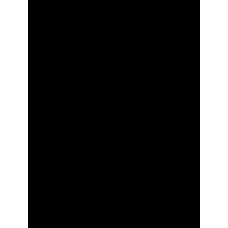 Palma 004