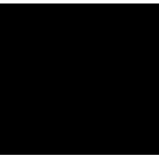 Palma 007