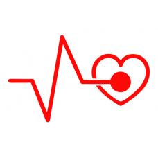 EKG a srdce