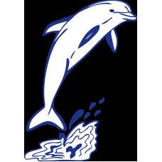 Delfín s vlnkami