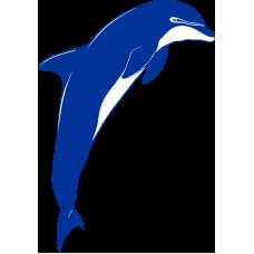 Delfín 006