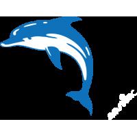 Delfín 008