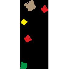 Motýlci - různobarevní