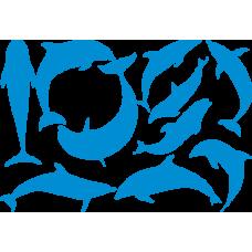 Sada delfínů