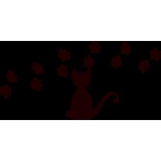 Příběh kočky
